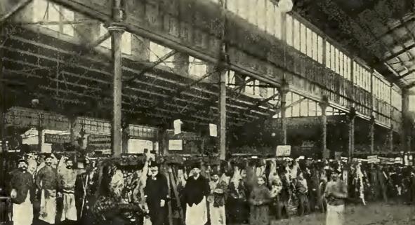 Zentralmarkthalle Wien 1905
