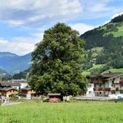 "Kulturplatz ""Drei Linden"", Schwendau, Tirol"