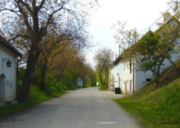 Kellergasse in Stoitzendorf (NÖ)