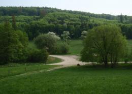 Eichgraben