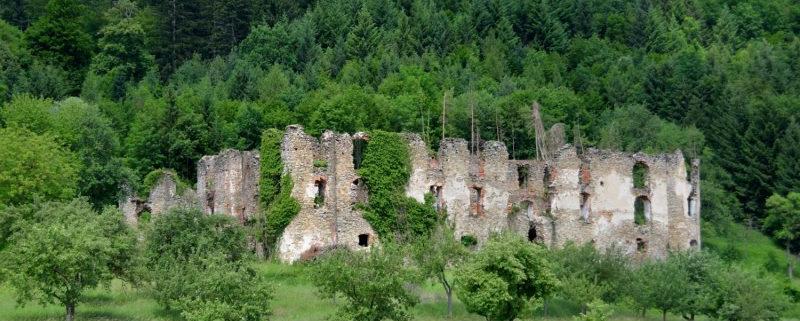 Schlossruine Niederperwarth